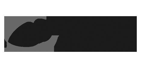 sa rugby